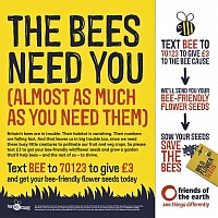 Donate To Friends of Earth to Save Bees.